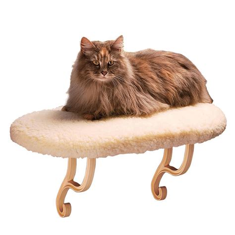 cat beds amazon amazon com k h thermo kitty sill cat window sill seat