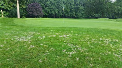 Course On Lawns What You Should by Lawn Doctor Lawn Care Insights April Showers Should Bring