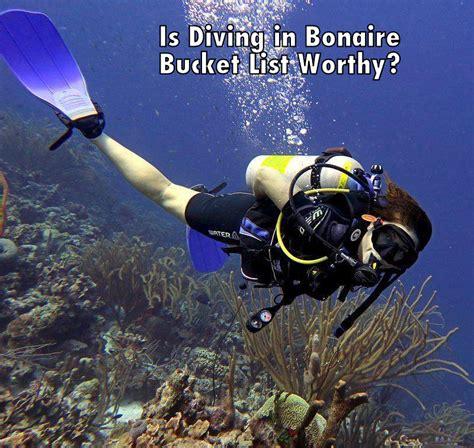 bonaire dive is scuba diving in bonaire list worthy