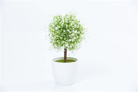 buxus topiary trees artificial topiary tree flowers buxus boxwood
