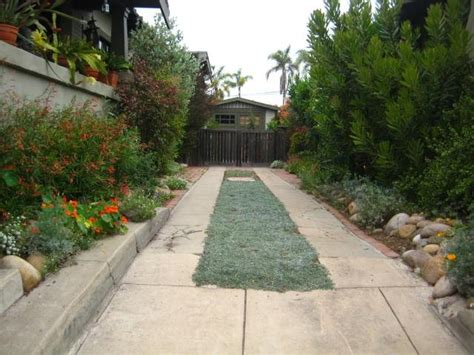 Landscape Ideas Next To Driveway Driveway Calimesa Ca Photo Gallery Landscaping Network