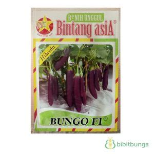 Biji Benih Terong Ungu Panjang Hibrida F1 benih bintang asia terong bungo f1 5 gram jual tanaman