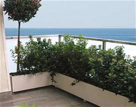 piante per terrazze piante x terrazza pendente dragtime for