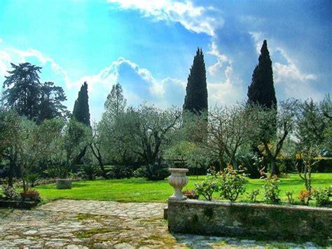 ulivi in giardino giardino di ulivi foto di villa paradiso sirmione