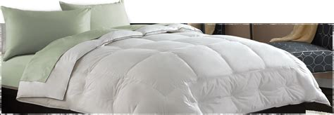 allergy bedding say goodbye to allergies with allergy bedding
