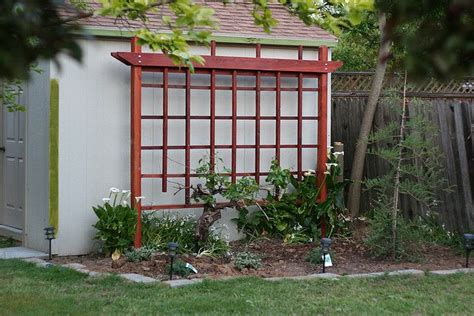 backyard grape trellis discover and save creative ideas