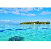 Ile Aux Cerfs Tour  Full Day Cruise As From €38 / Person