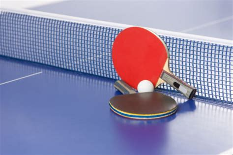 which table tennis table should i buy butterfly table tennis racket buying guide ebay