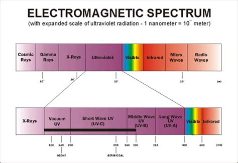 Ultraviolet Light Wavelength by Uv Visible Spectrum Pictures To Pin On Pinsdaddy