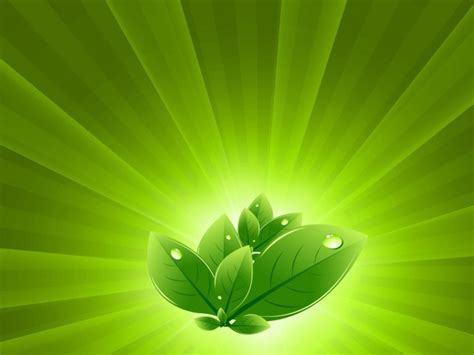 powerpoint design leaf 41 best images about abstract on pinterest powerpoint