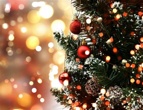 cute christmas tree photo free download