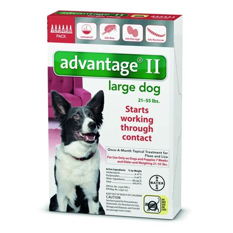 advantage ii large advantage ii for large dogs 21 55 lbs 6 month supply