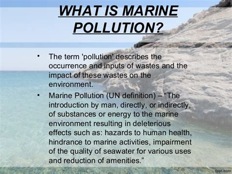 research paper about marine pollution book review of the odyssey