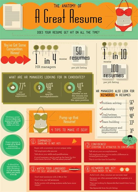 the anatomy of a great resume infographic best infographics