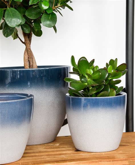 ivyline turno cm indoor plant pot  ocean
