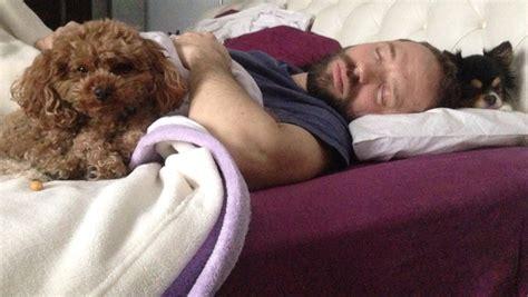 dormire abbracciati al cuscino beautiful abbracci a letto ideas home design ideas 2017