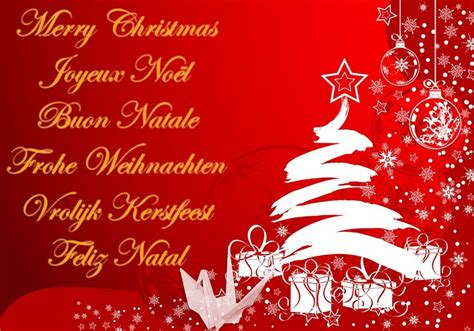 iglu da claudia merry christmas   wonderful