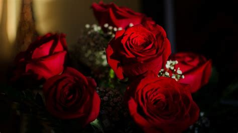 when should i buy flowers for valentines day buy your s day flowers now to save money