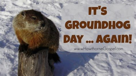 groundhog day all again meaning groundhog day all again meaning 28 images and i don t