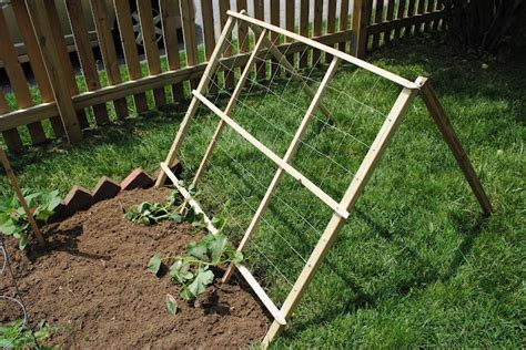 Buy Trellis A Cucumber Trellis To Make Or Buy Outside Yard Stuff
