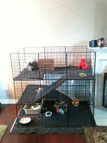 indoor garden for rabbits 25 b 228 sta id 233 erna om indoor rabbit cage p 229