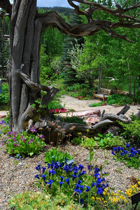 Betty Ford Alpine Gardens by Photo Gallery Media Betty Ford Alpine Gardens