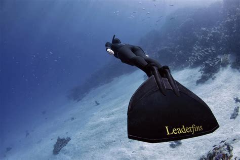 dive foto photos freediving images to inspire photo bull