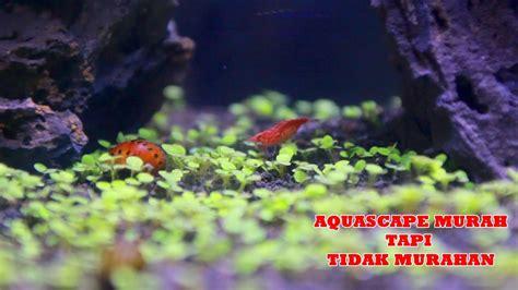 cara membuat aquascape murah cara membuat aquascape murah tapi mewah youtube