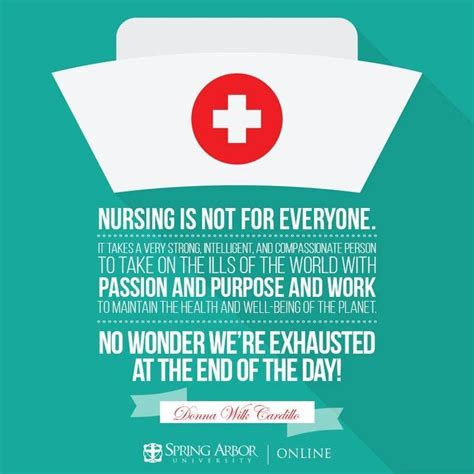 Rn With Mba Opportunities by The 25 Best Nursing Programs Ideas On