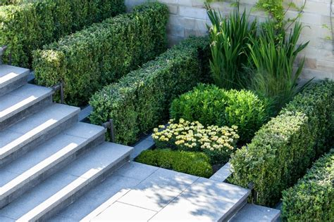 modern landscaping how to add modern elements to your landscape design