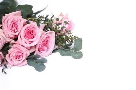 Buy Roses by Where Can You Buy Roses 25 Gorgeous Ideas