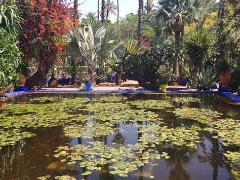 bei giardini jardin majorelle in marocco uno dei pi 249 bei giardini al