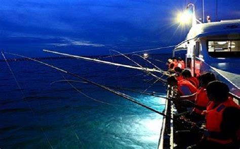 squid fishing at night from a boat squid fishing lights localbrush info