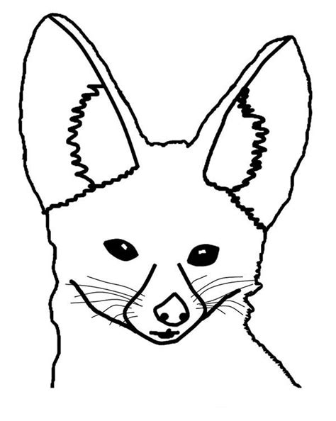 coloring page fox head pin desert fox coloring page on pinterest