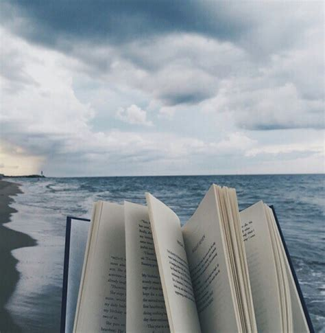 a seaside books nature book reader