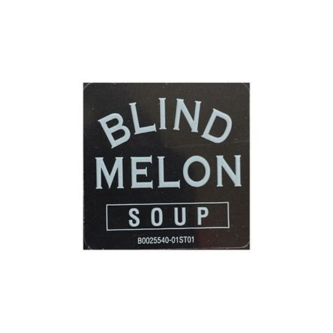 blind melon lp vinyl blind melon soup lp 180 gram vinyl kevin gray cohearent