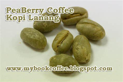 peaberry si kopi lanang berbiji tunggal yang langka book and coffee