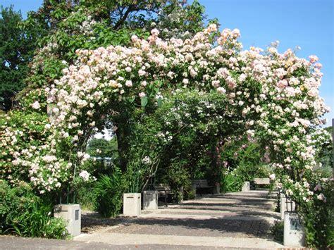 Garden Flower Arch Owen Memorial Garden Skinner Butte