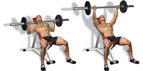 bench press for arms how to build the perfect pectorals all bodybuilding com