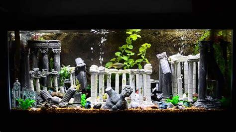 Aquascape Malaysia 75 Gallon Roman Theme Aquarium Doovi