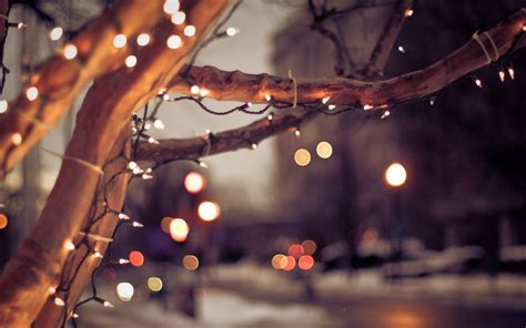bokeh trees lights holidays sparkle roads macro close up