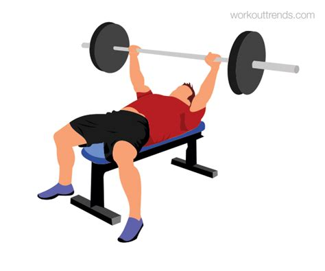 whats a bench press how to do barbell bench press workout trends