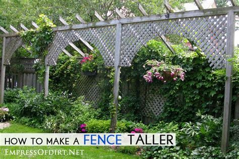 how to make your backyard more private 151 best images about vines screens climbing roses on
