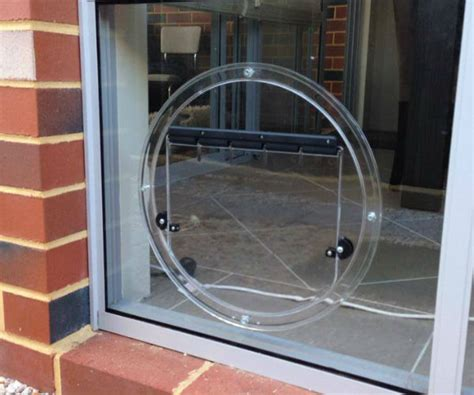 pet door glass glass pet doors perth wa glass pet doors