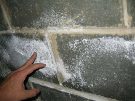 White Powder On Basement Walls by Efflorescence For Inspectors Internachi