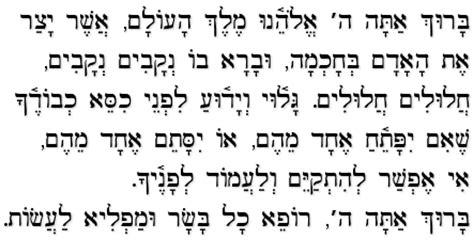 jewish prayer for going to the bathroom asher yatzar et ha adam fashioner of mankind