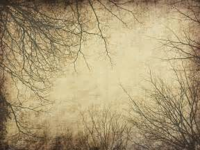 tree with old grunge antique paper texture stock photo