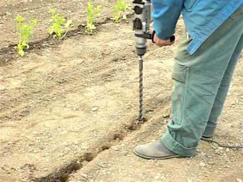 apprendre a planter des poireaux comment bien planter les poireaux doovi