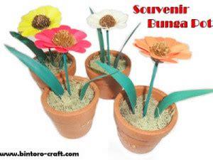 souvenir bunga pot aster undangan souvenir pernikahan