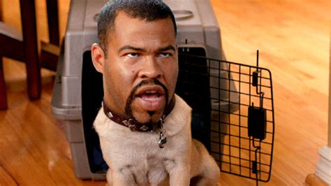 key and peele puppy key and peele substitute quotes quotesgram
